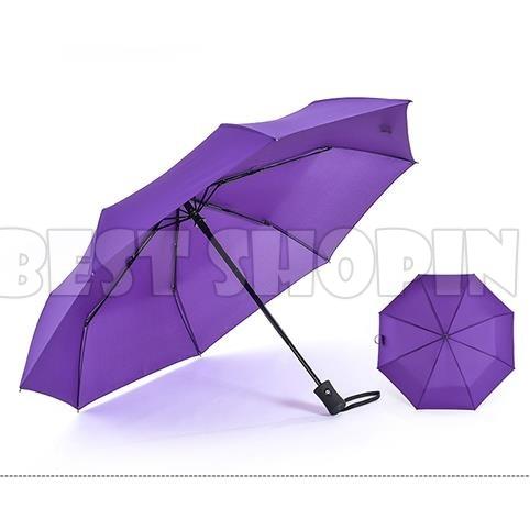 umbrellapurple1-102.jpg